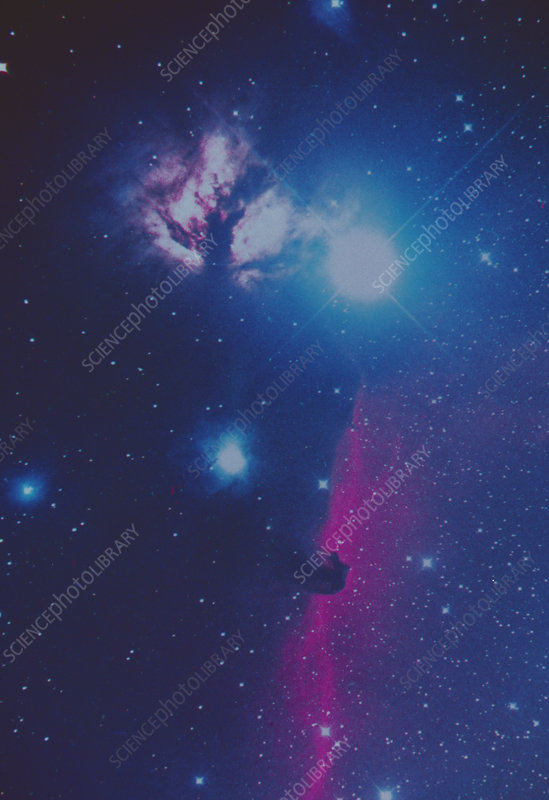 Optical photograph of the Horsehead Nebula