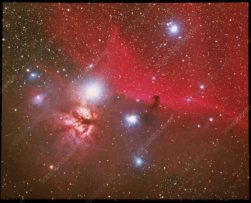 Optical image of the Horsehead Nebula