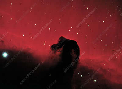 CCD optical image of the Horsehead nebula in Orion