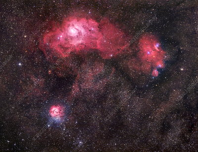 Lagoon, Trifid and NGC 6559 nebulae