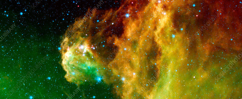 Young stars emerge from Orion's head