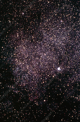 Optical photo of the Scutum Star Cloud