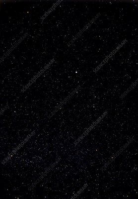 Star field in the constellation of Lyra