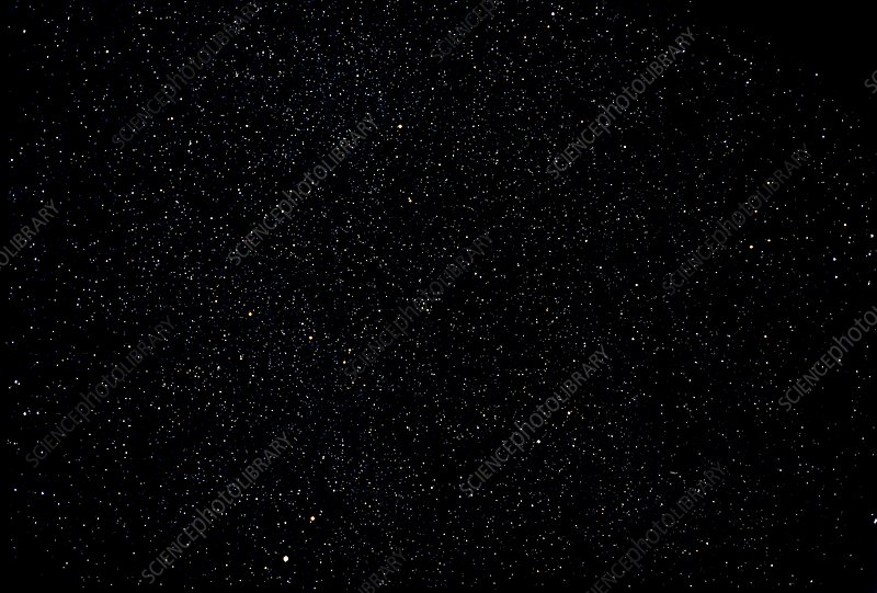 Starry sky: Vulpecula and Aquila