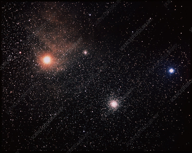 Antares And Starfield - Stock Image R610/0150 - Science ...