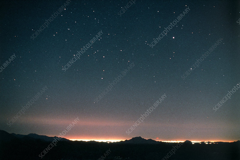 Canis major constellation in a light-polluted sky