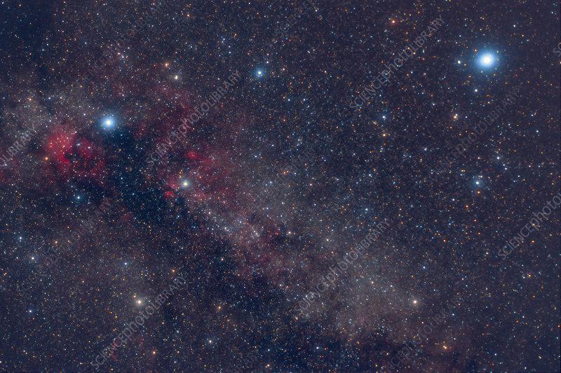 Cygnus and Lyra Constellations