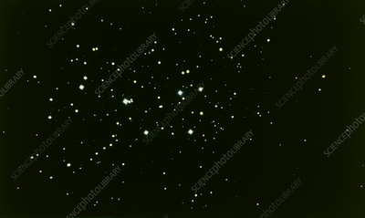 Binocular view of the Pleiades open star cluster
