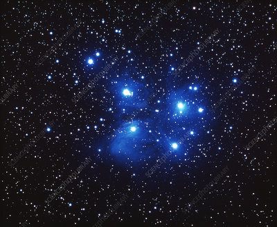 The Pleiades open star cluster