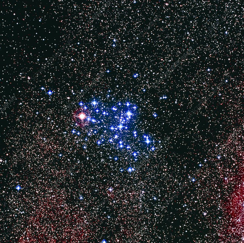 Optical image of the Butterfly star cluster, M6