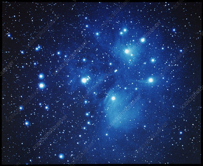 Pleiades open star cluster