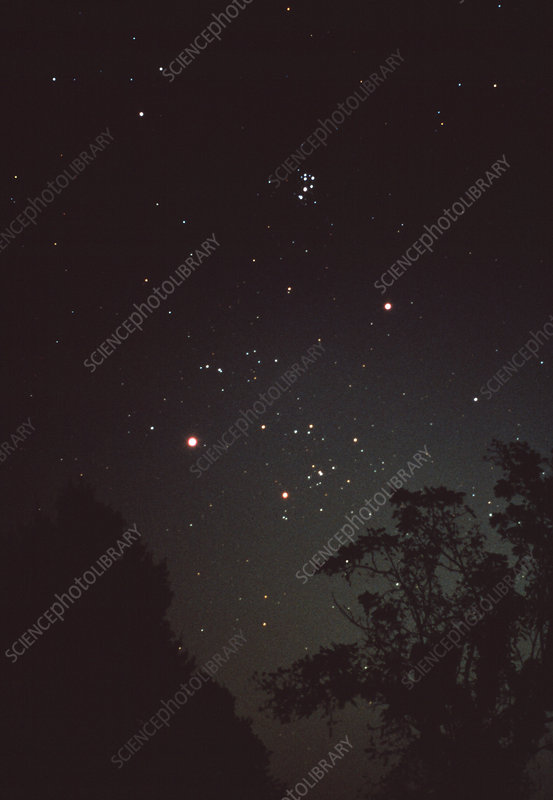 Hyades and Pleiades star clusters