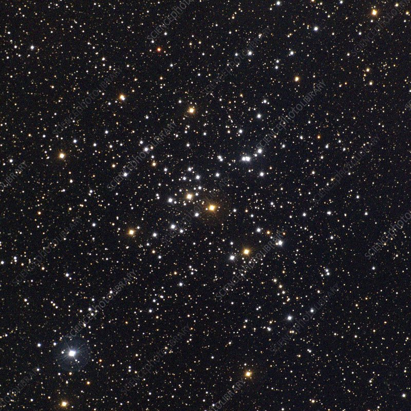 Star cluster M41