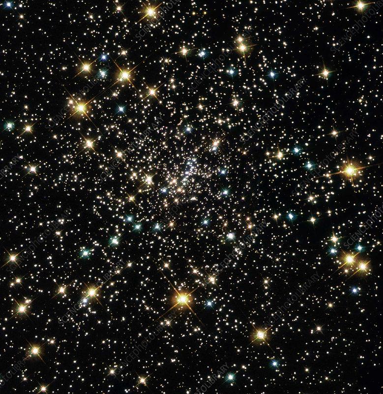 Stars in globular cluster NGC 6397