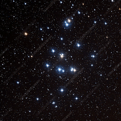 Beehive star cluster (M44)