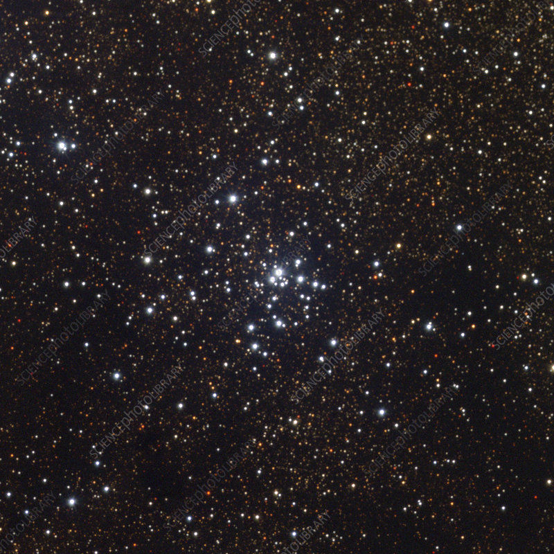 Open star cluster M21