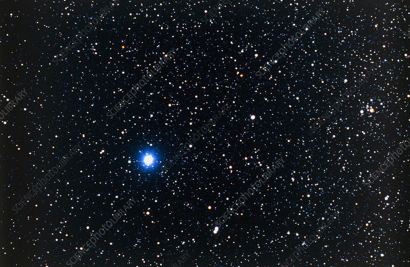 Optical photo of Vega, the brightest star in Lyra