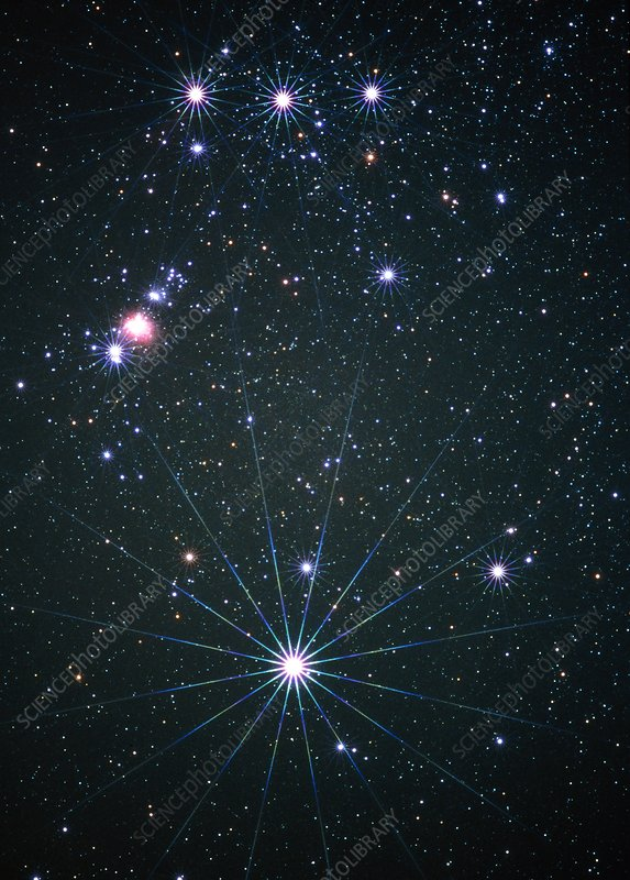 Optical image of the star Rigel in Orion