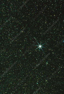 Optical image of the star Sirius