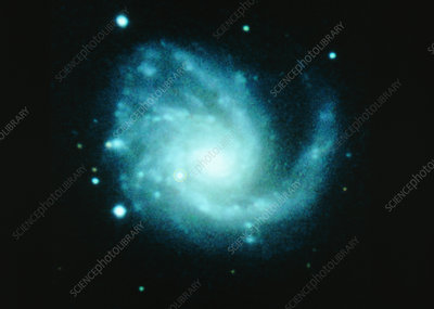 Supernova in spiral galaxy M99