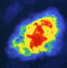 Radio image of the Crab nebula supernova remnant
