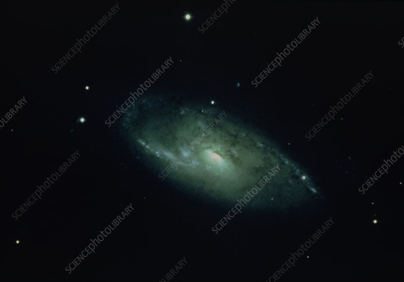 Optical image of spiral galaxy M106