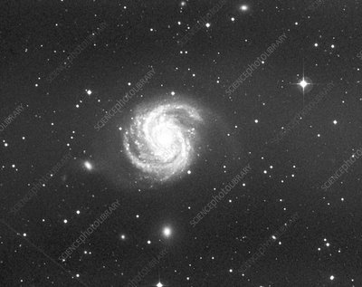 Optical image of the spiral galaxy M100