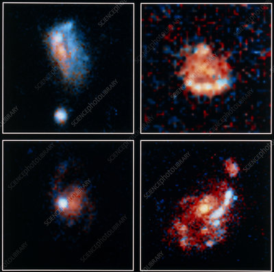 Hubble image of 4 distant irregular blue galaxies