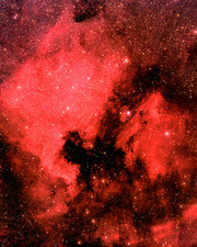NGC7000 in the Constellation Cygnus