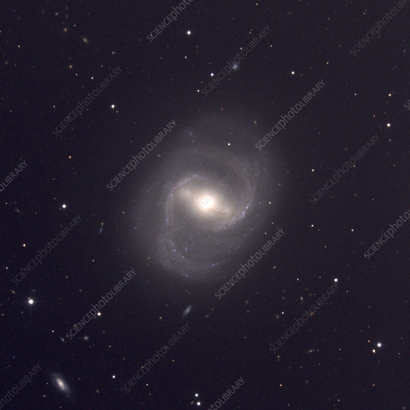 Barred spiral galaxy M91