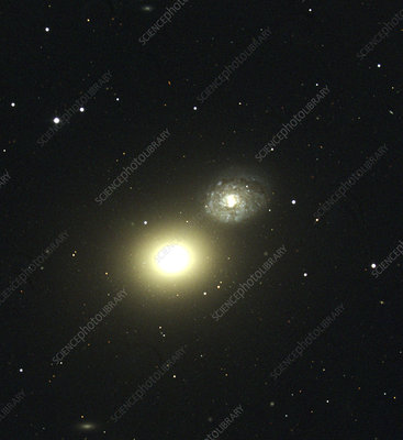 Elliptical galaxy M60