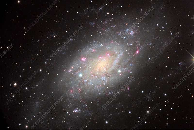 Spiral galaxy NGC 2403, optical image