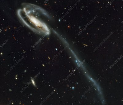 The Tadpole colliding galaxies
