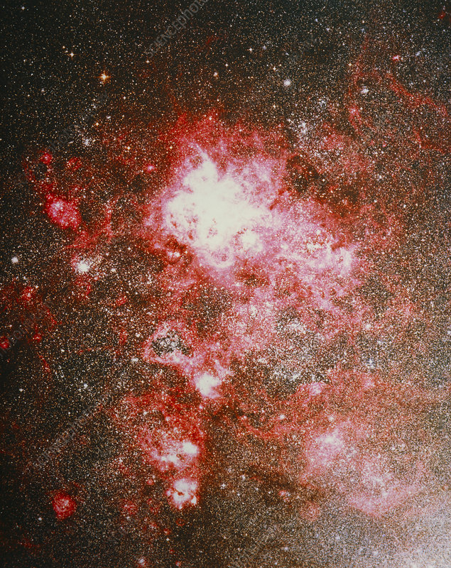 Optical image of the Tarantula nebula, 30 Doradus