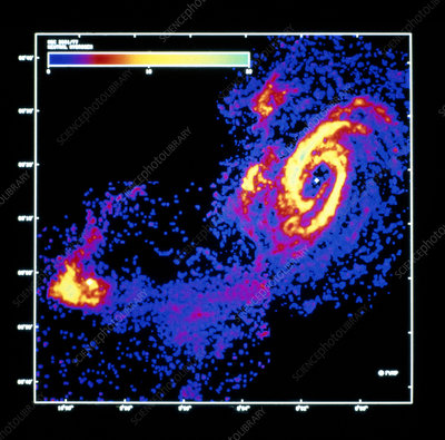21cm radio map of galaxies M81 and NGC 3077