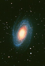 Optical image of the spiral galaxy M81