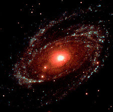 Spiral galaxy M81, UV image