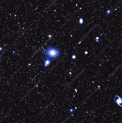 Optical image of the Fornax cluster of galaxies