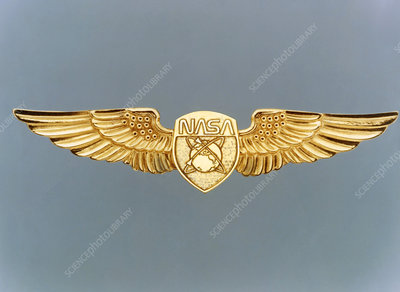 nasa astronaut wings logo - photo #20