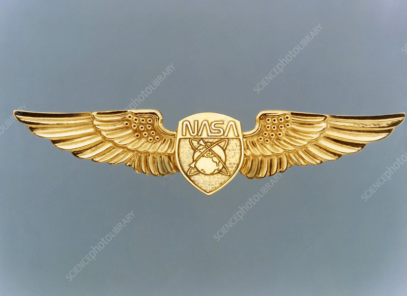 Civilian astronaut wings