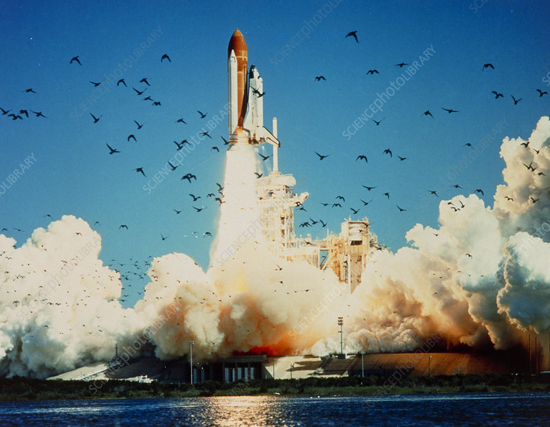 space shuttle challenger findings - photo #4