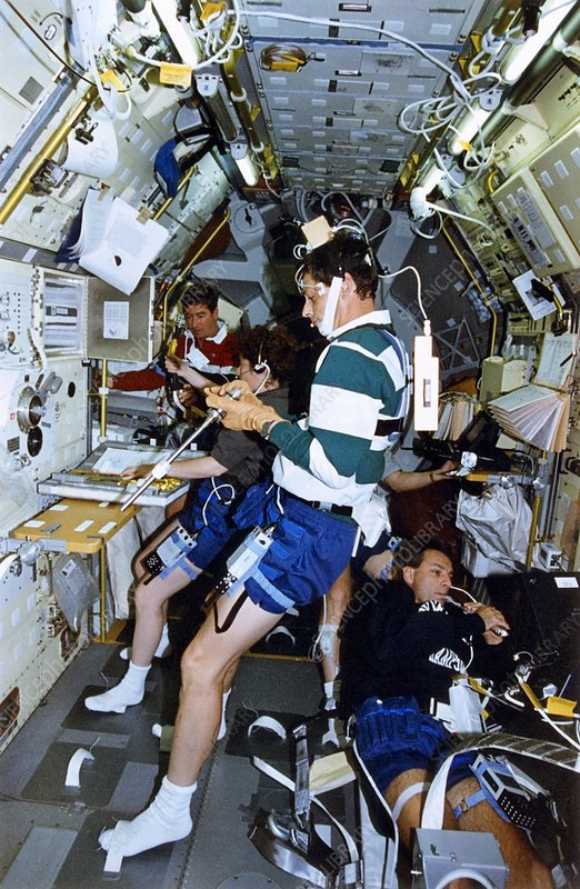 Scene inside the Life and Microgravity Spacelab