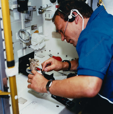 Schlegel with fungi experiment, Spacelab D2