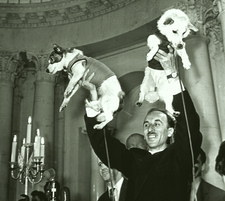 Second animals in space: Soviet space dogs