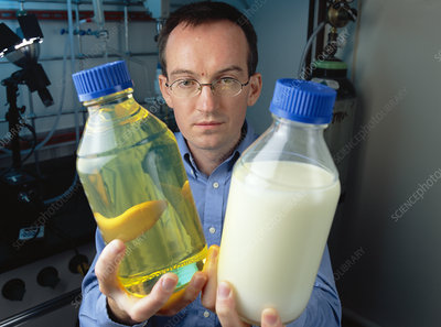 Aquafuel research