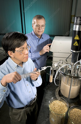 Biofuel research, ethanol from barley