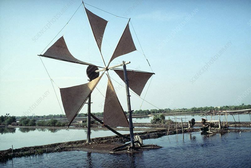 Windmill with sails made of reed-like material