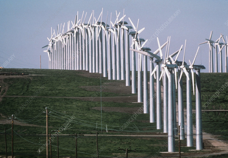 Wind farm producing electricity, California