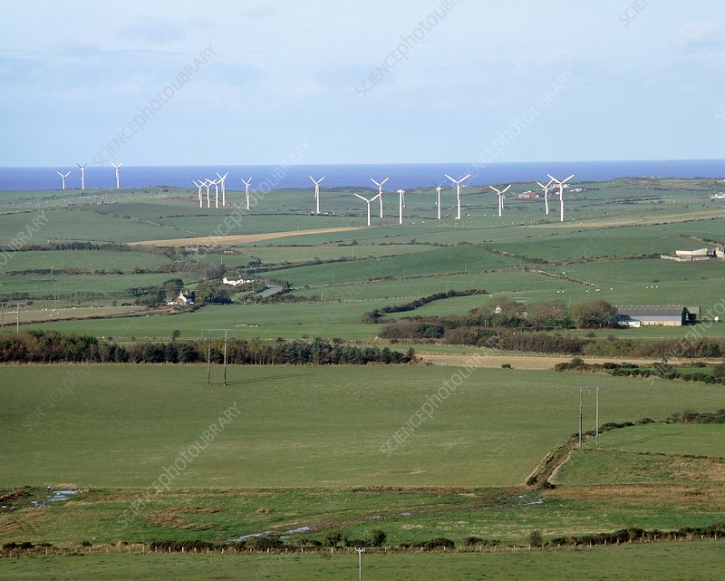Wind turbines in fields, Anglesey