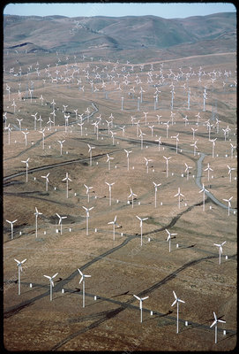 Wind farm generating electricity, California, USA